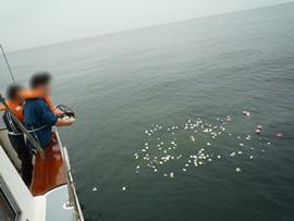 5.穏やかな海