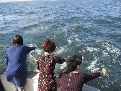 4.お茶を海に