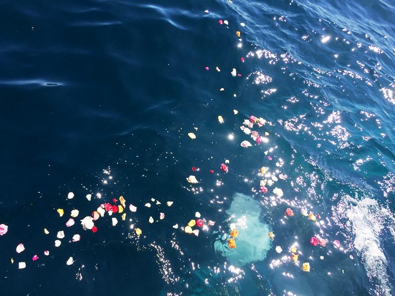 9.海面からゆっくりと沈んでいくご遺骨