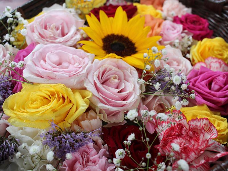 1.ピンクと黄色の花かご