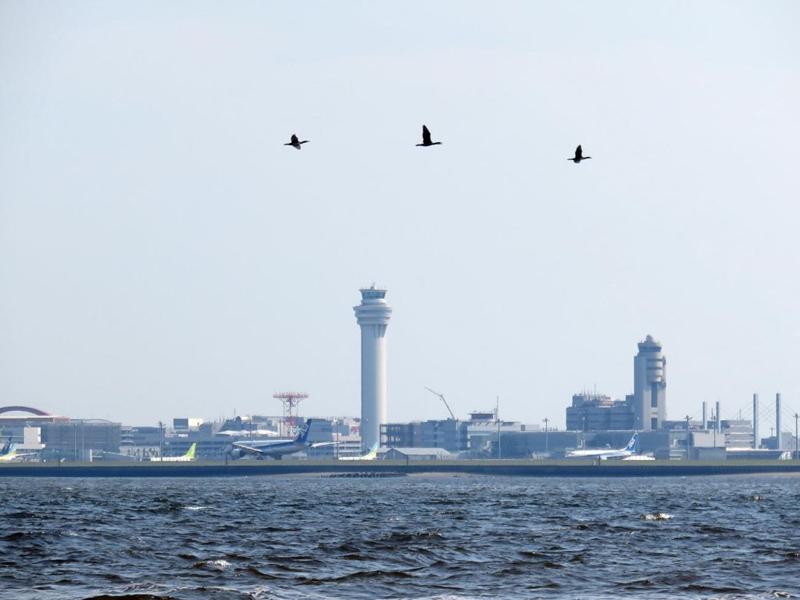 5.羽田空港沖へ到着