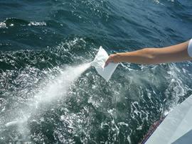 5.風に注意をしながら直接海へ