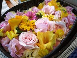 1.黄色とピンクの花かご