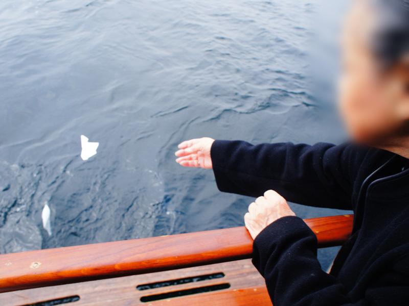 7.青い海へ散骨