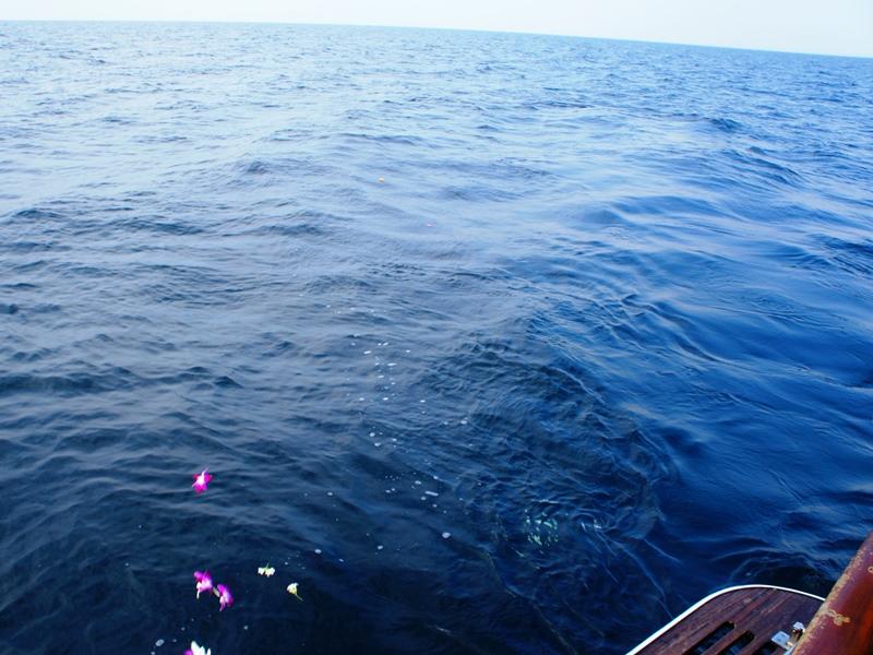 10.遺骨が青い海へ広がっていきます