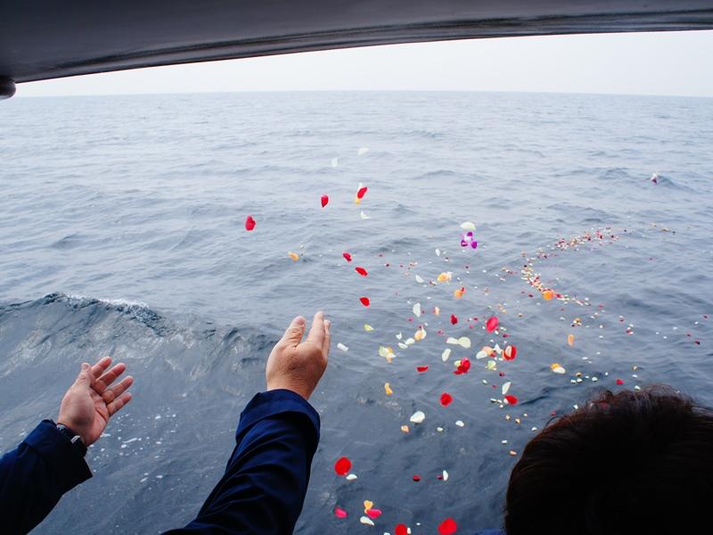 11.海に広がる色とりどりの花びら