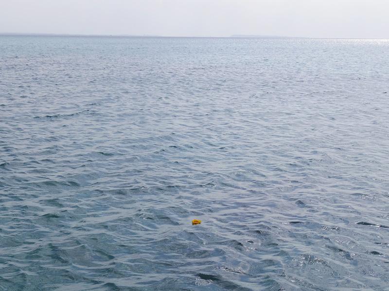 8.美しい宮古島、伊良部島の海で