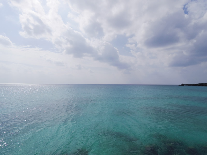 9.再びサンゴ礁や美しい魚たちと共に