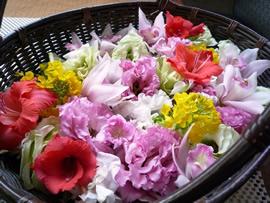 1.ハイビスカスの花かご
