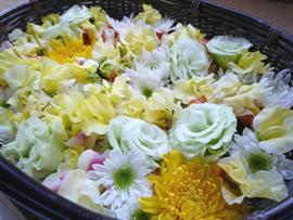2.菊の花かご