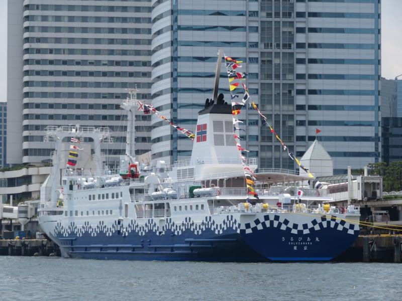 13.大型客船さるびあ丸