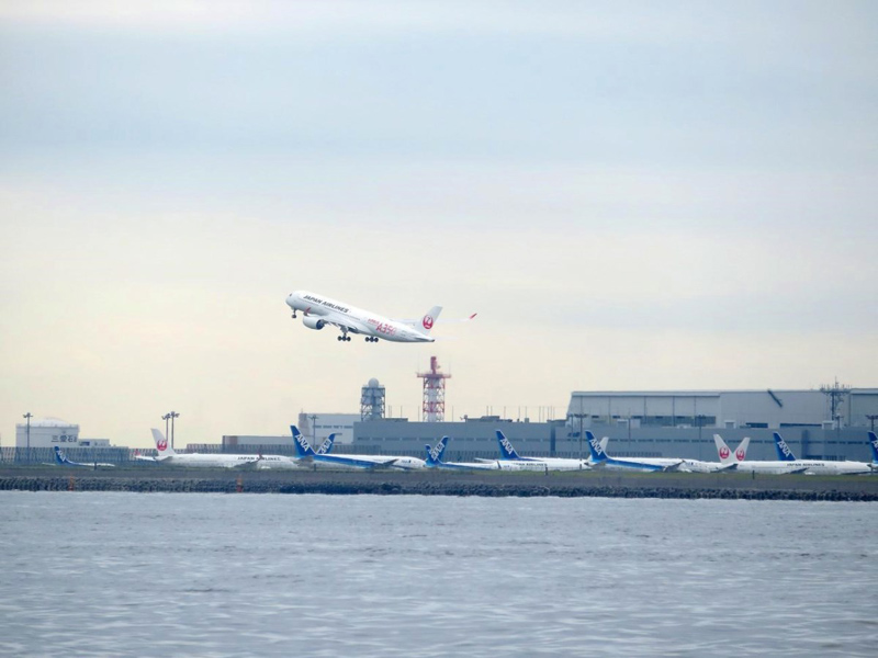 6.JAL「A350」