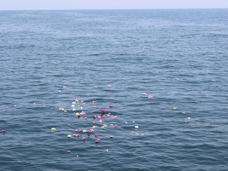 6.穏やかな海にとどまる花びら