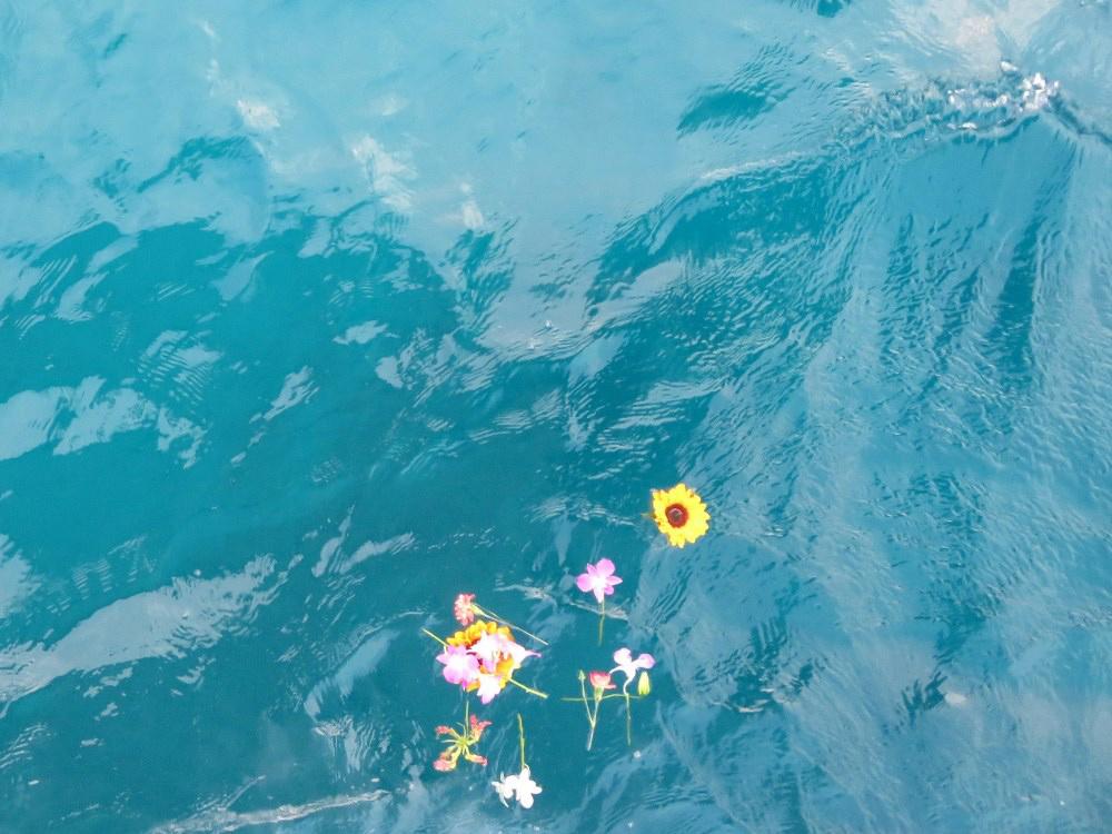 5.美しい海
