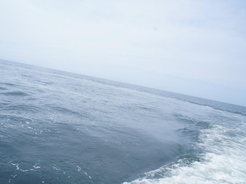 8.何処までも続いて見える新潟の海