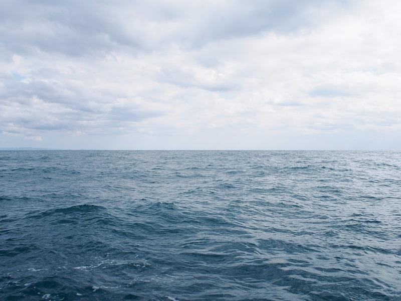 10.ゆっくりとうねる駿河湾