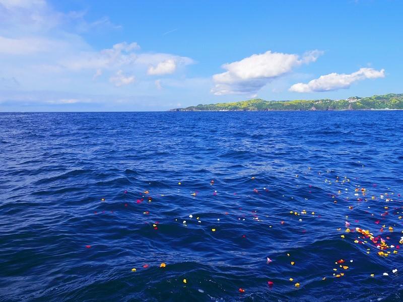6.伊豆半島を包み込むまさに群青の海