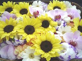 3.向日葵の花かご