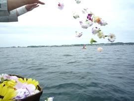 9.風に吹かれて花が舞います