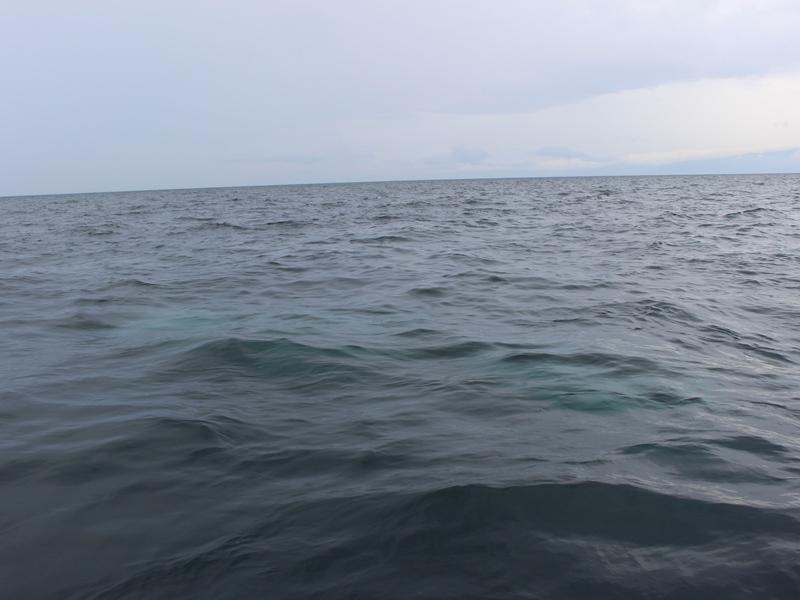 12.海中にご遺骨が溶けていきます