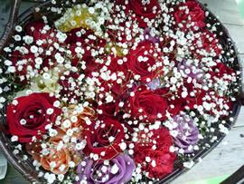 1.深紅の薔薇とかすみ草