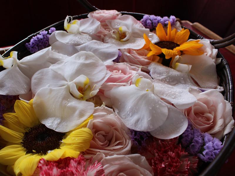 1.瑞々しい花たち