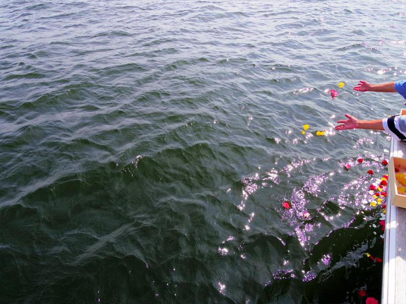 3.色とりどりの献花
