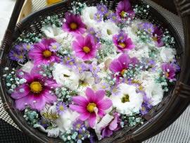 1.コスモスの花かご