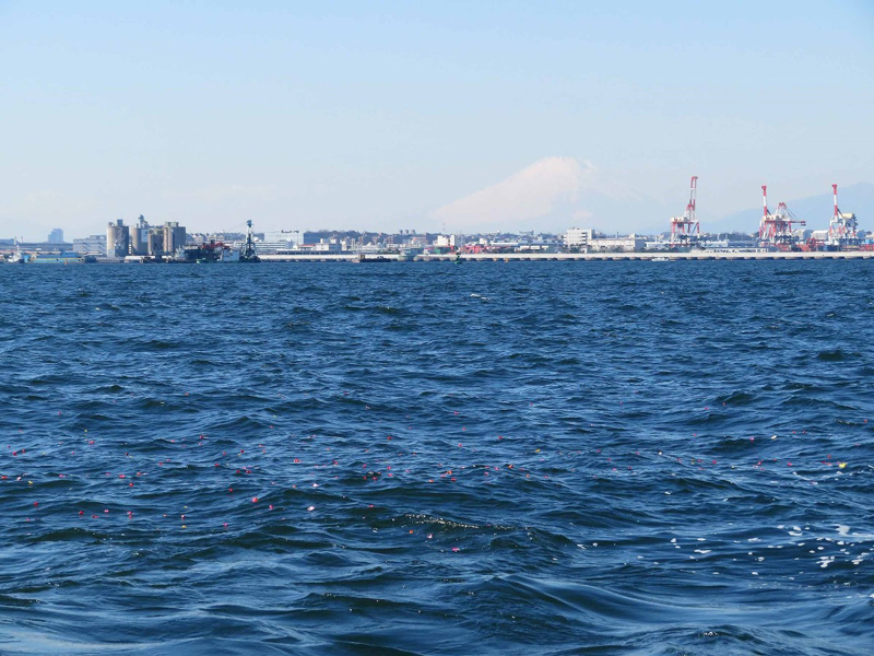 5.横浜の海へ